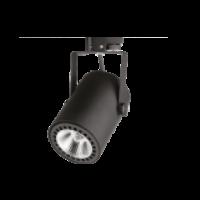 Ray Spotlar